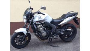Honda CBF 600 für Klasse A